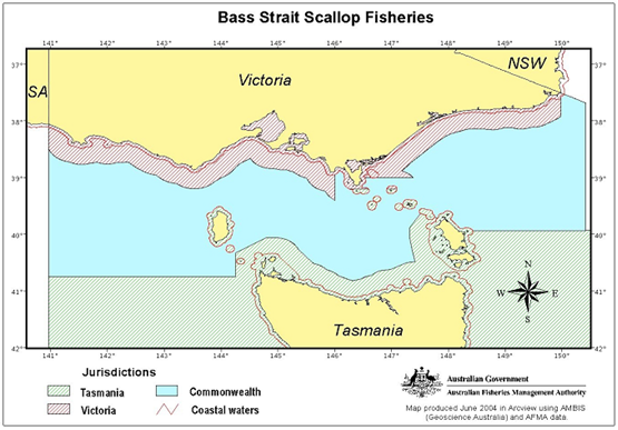 Bass Strait scallop Fisheries image