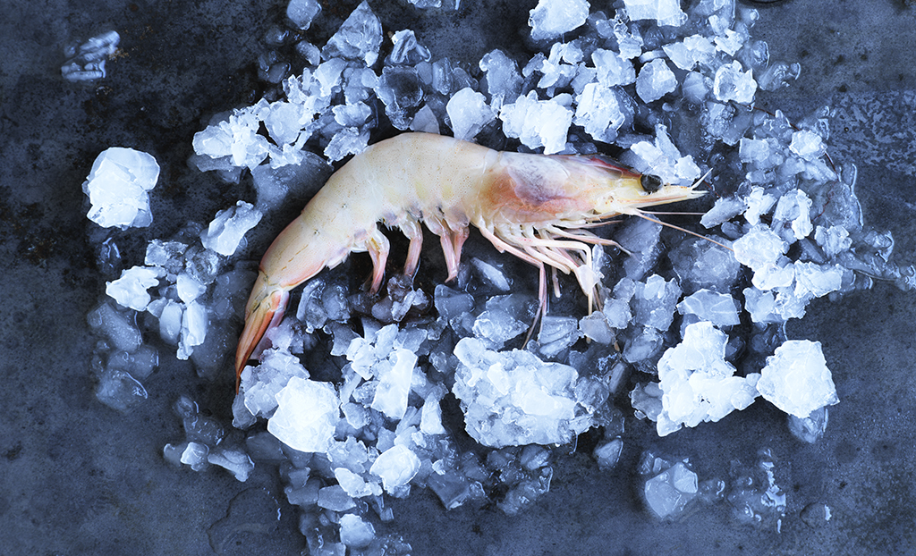 Raw banana prawn_0179