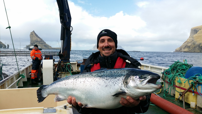 Dan Richards holding an Atlantic Salmon while visiting a farm in the Faroe Islands.