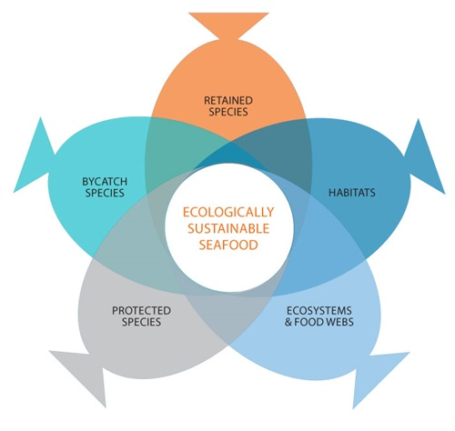 The five ecological components used to determine ecologically sustainable fisheries