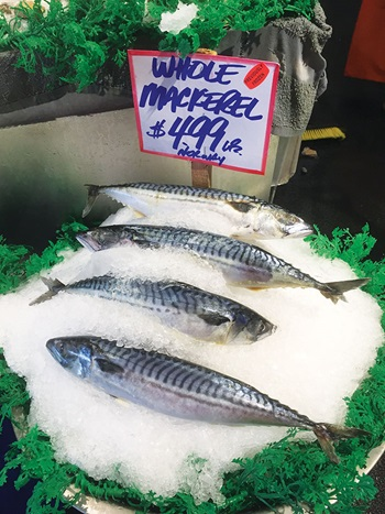 Photo of whole Mackerl on ice at Pike Place Market, Seattle
