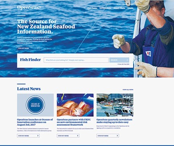 Screenshot of Open Seas website homepage