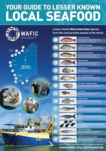 WAFIC poster guide to lesser known local seafood