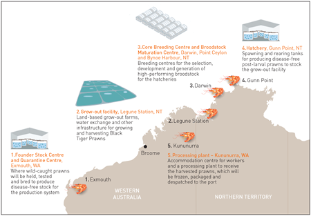 Infographic showing Project Sea Dragon facilities
