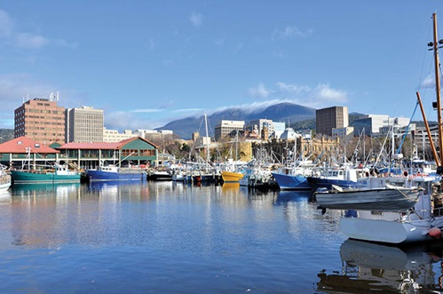 Photo of fishing boats in Hobart harbour